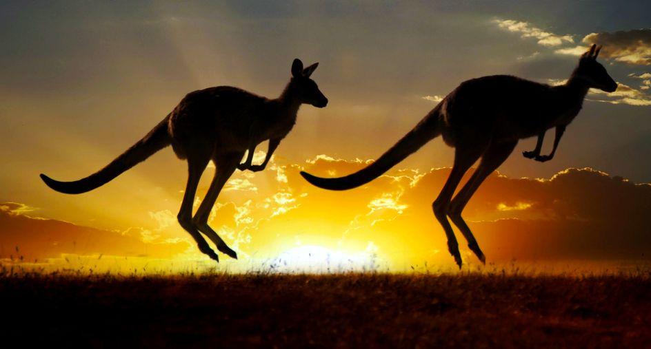Springen als een kangoeroe door diepe bindweefsel massage